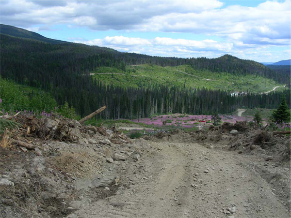 Decar project Baptiste zone landscape
